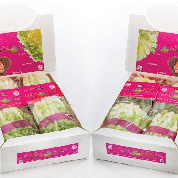 gamma-prodotti-lady-leaf